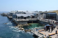 MontereyBayAquariumBackview