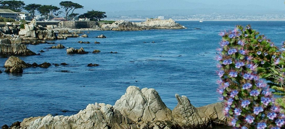 monterey bay lovers point pacific grove ocean scene